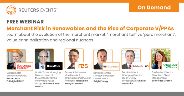 Merchant Risk in Renewables and the Rise of Corporate PPAs & VPPAs