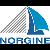 Norgine - Logo