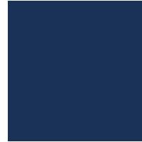 USAA's Logo