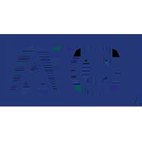AIG - Logo