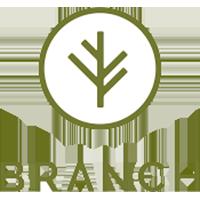 Branch Insurance - Logo