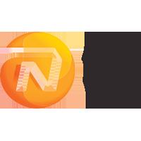 NN Group - Logo