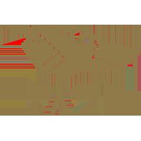TAZI - Logo