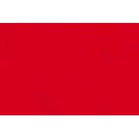 rbi.png's Logo