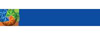 Pyrexa Global Logo