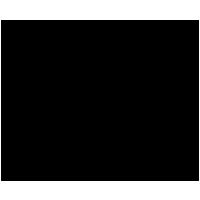 bird's Logo
