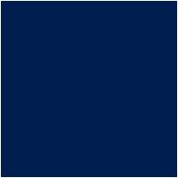 VW's Logo