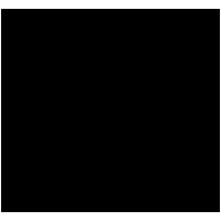 NIO U.S - Logo