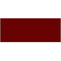 Sonic Automotive Inc. - Logo