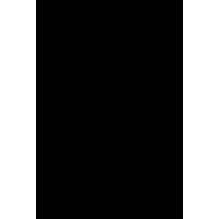 World Wildlife Fund - Logo