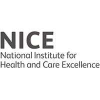 NICE's Logo