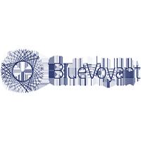 BlueVoyant International - Logo