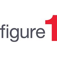 Figure 1 - Logo