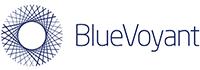 BlueVoyant - Logo