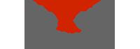 Fenix Group International - Logo