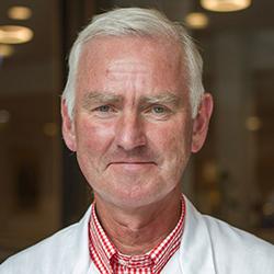 Prof. Sverre Steinsvåg - Headshot