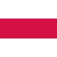 Kelloggs's Logo