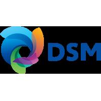 DSM - Logo