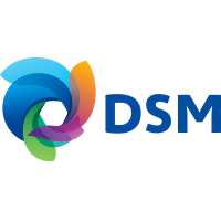 DSM North America - Logo