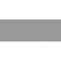 DWS - Logo