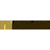 Majid Al Futtaim Holdings - Logo