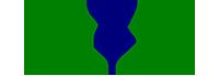 e2s Logo