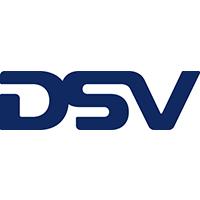 dsv's Logo